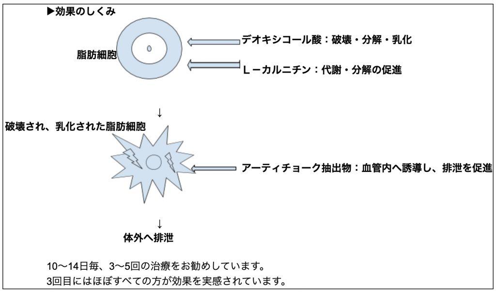 デオキシコール酸 イメージ図